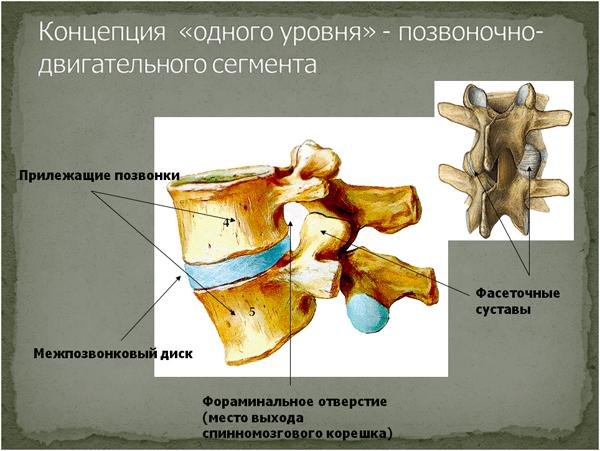 Критерии работы врача фтизиатра